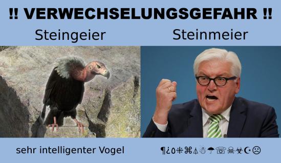 Steingeier/Steinmeier