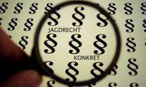 cropped-hintergrund_jagdrecht_konkret_lupe.jpg